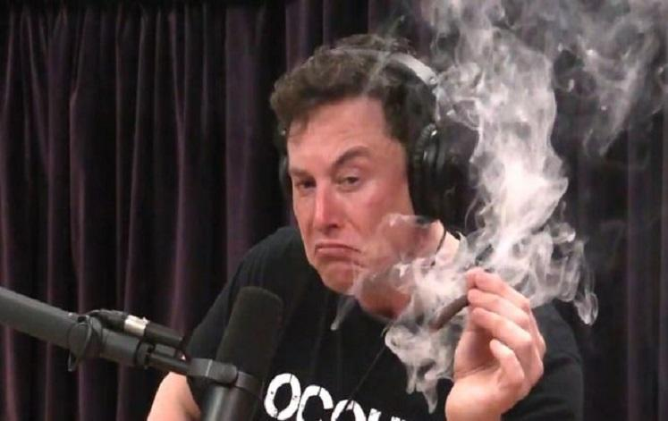 Elon Musk smokes a live joint during an interview