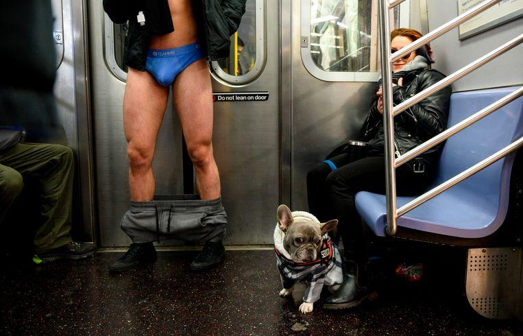 No pants on the metro: No Pants Subway Ride in 50 amusing pictures 30