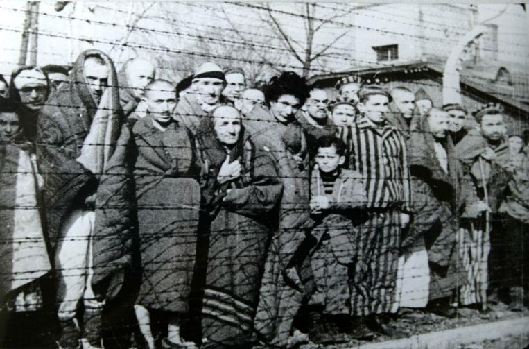 15,000 murders per day: August-October 1942 was deadliest during Holocaust 1