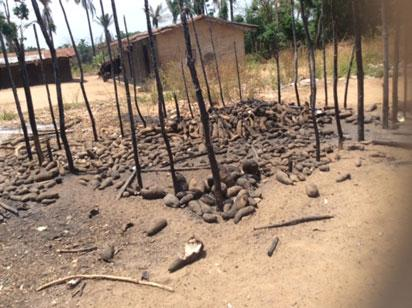 Many missing as herdsmen strike, burn down villages in Benue