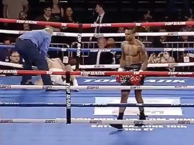 "A brutal knockout: ""Like being shot by a bazooka"""