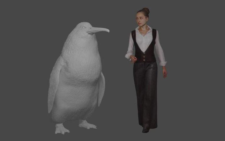 """Giant penguin """"as big as human"""" found in New Zealand"""