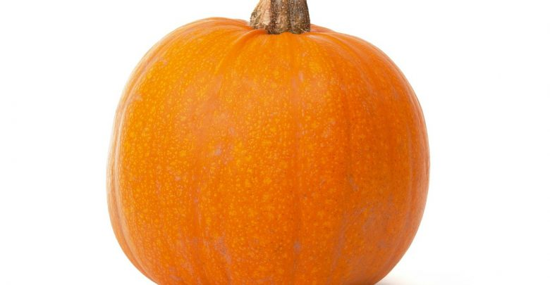 Photo of Attention to Halloween: some pumpkins are poisonous